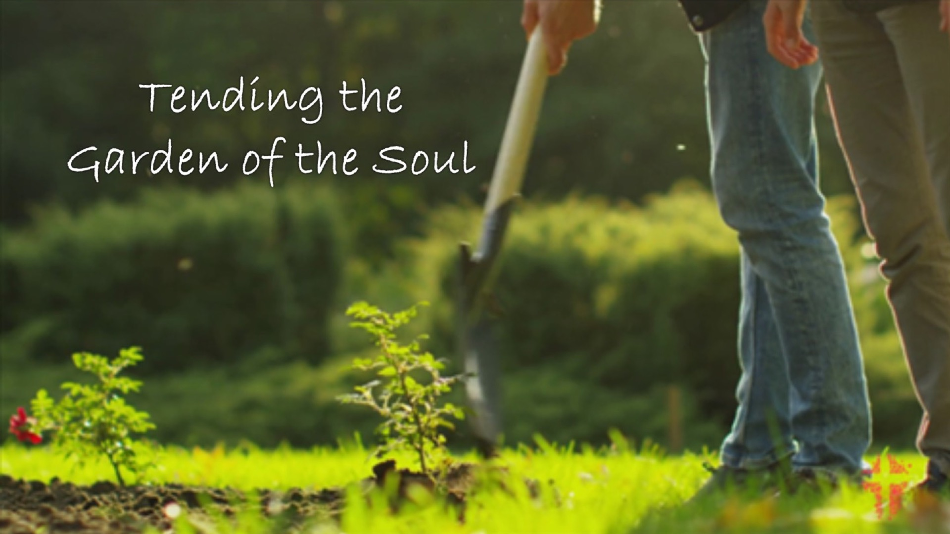 Tending The Garden Of The Soul